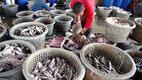 Viele Gastarbeiter sind in der Fischerei in Thailand beschäftigt, ihre Pässe müssen sie abgeben.