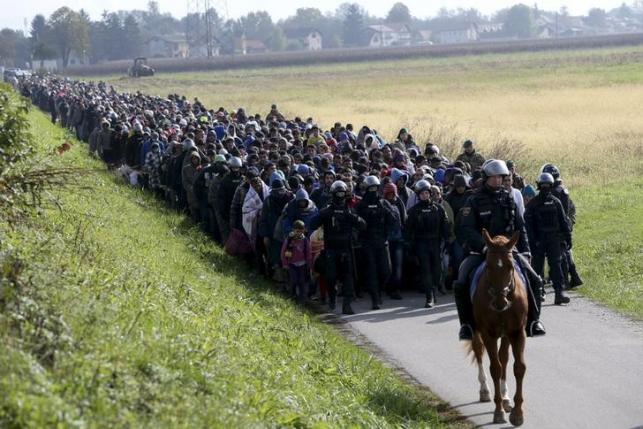 A mounted policeman leads a group of migrants near Dobova, Slovenia, October 20, 2015.  REUTERS/Srdjan Zivulovic