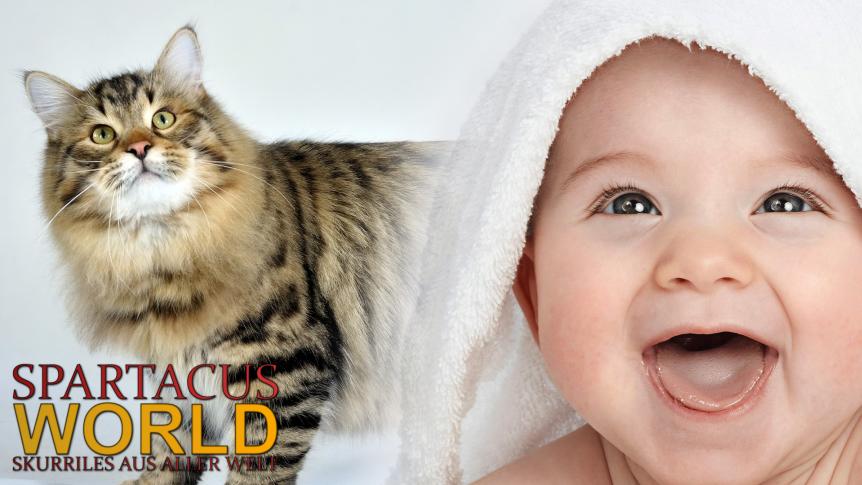Russische Katze rettet ausgesetztenSäugling.