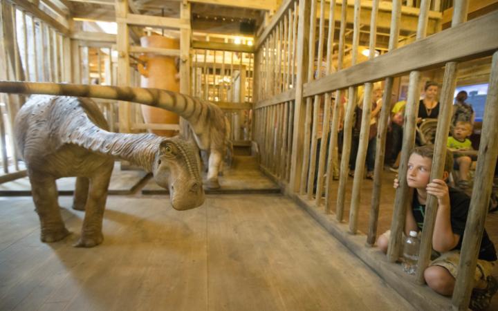 noahs-ark-cage-large